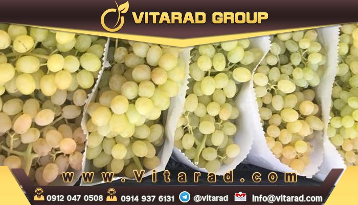 Iran is the largest producer of grape varieties in the world