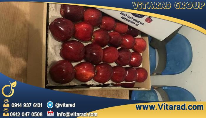 Neighboring countries' capacity to export apple trees