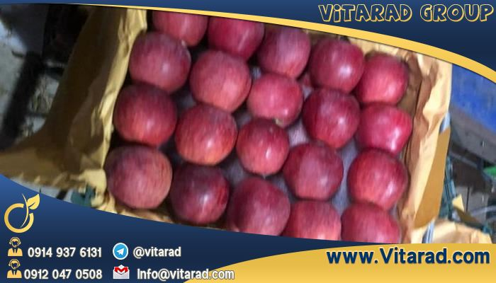 The best red apple in Iran and exported to other countries