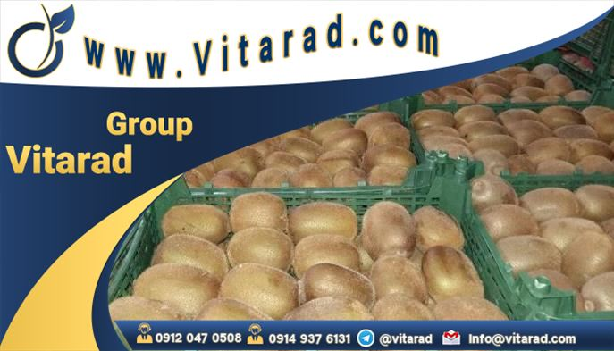 What is kiwi grading and packaging from Iran for import?