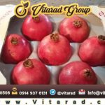 Pomegranate price per kg today