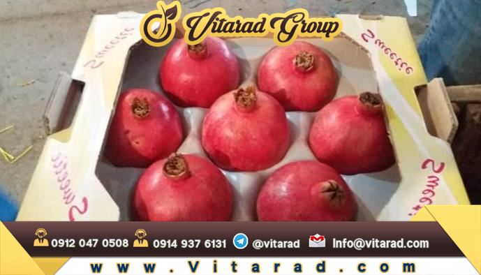 Pomegranate export from Iran with reasonable price and excellent quality