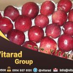 Wholesale red and yellow apples