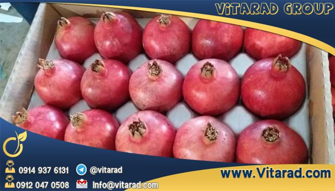 buy pomegranate from Iranian supplier