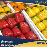 Red bell pepper wholesale price